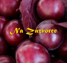 Myrobalán plodový ´Klar´ ČERVENOLISTÝ